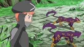 Pokémon : Que cachent la vérité et l'idéal ?