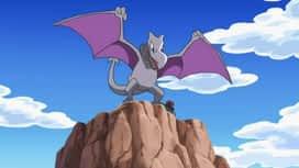 Pokémon : Chaleureuses retrouvailles et amitiés enflammées !