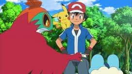 Pokemon : 37-Une amitié née dans la forêt !