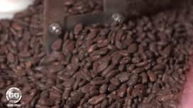 66 Minutes : Pâques : la bataille du chocolat