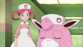 Pokemon : 45-Les exploits d'un grand maladroit !
