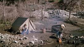 La petite maison dans la prairie : Saison 7 épisode 21