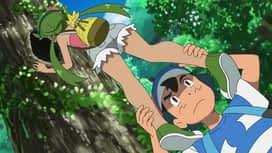 Pokemon : 18-Un nectar de saison !