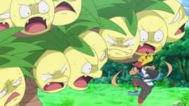 Pokemon : 20-Sauvetage et rencontres