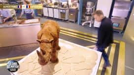 Le meilleur pâtissier, les professionnels : Rhinocéros : cassera ou cassera pas ?