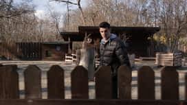 Idemo u ZOO : Epizoda 27 / Sezona 1 : Eland antilopa