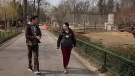 Idemo u ZOO : Epizoda 43 / Sezona 1 : Kapibara