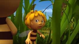 Pčelica Maja : Epizoda 11