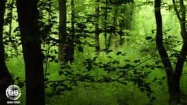66 Minutes : Villages Nature : les tropiques aux portes de Paris !
