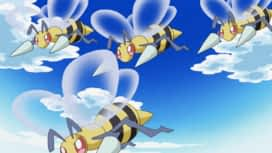 Pokémon : Miel et mésaventures !