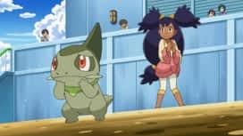 Pokémon : Rachid et l'affaire du Chacripan témoin !