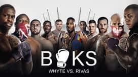 Boks: Whyte vs. Rivas en replay