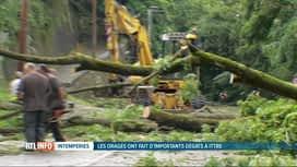 RTL INFO 19H : Les orages ont touché une partie de la Belgique