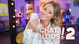 Chat alors ! 2 en replay