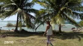 Zone interdite : Sur les plages ou les marchés : ils n'ont qu'un été pour réussir !