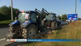 RTL INFO 13H : Manifestation de tracteurs sur la N25, ce matin