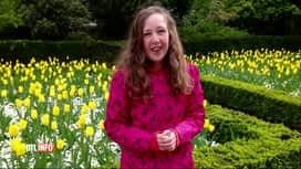 RTL INFO 13H : Le décès de Nora Quoirin ne serait pas dû à un acte criminel
