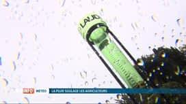 RTL INFO 13H : La pluie, un soulagement pour les agriculteurs