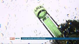 RTL INFO 19H : La pluie, un soulagement pour les agriculteurs
