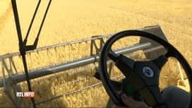 RTL INFO 13H : Les agriculteurs furieux après le rapport du GIEC sur le blé