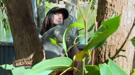 Les aventures de Nabilla et Thomas en Australie : Pause shooting photo avec des animaux