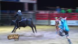 Les aventures de Nabilla et Thomas en Australie : Séance de rodéo sur un vrai taureau pour nos aventuriers