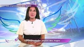 Les anges de la Télé-Réalité : Episode 107