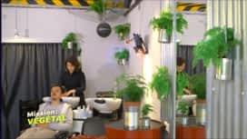 Mission : Végétal : Le salon bio