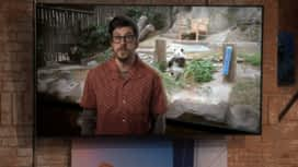 The Great Indoors - Man vs Geek : Saison 1 épisode 7