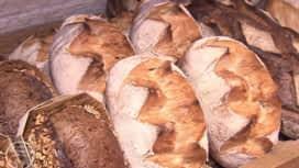 La meilleure boulangerie de France : Bretagne : journée 1