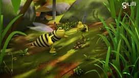 Maya l'abeille : Guêpes-apens
