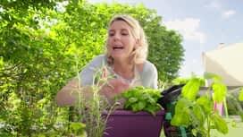 Vie de mère : Les jardinières