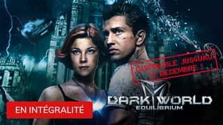 Dark World :  Equilibrium