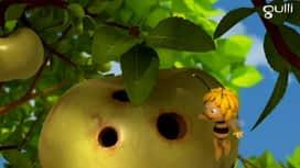 Maya l'abeille : Philibert