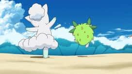 Pokemon : 17-Un beau début !
