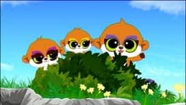 YooHoo i prijatelji : Epizoda 16