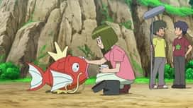 Pokemon : 21-Un moment magi... carpe !