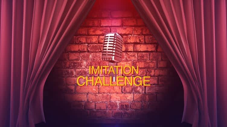 Imitation Challenge