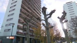 RTL INFO 13H : Des nuisances causées par une bande de jeunes à Molenbeek
