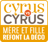 Cyrus vs Cyrus - Mère et fille refont la déco