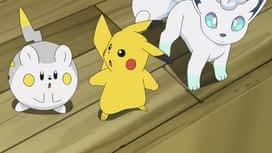 Pokemon : S21E39 Professeurs, vous avez rétréci les dresseurs !