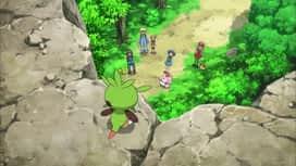 Pokemon : S17E25 Un tout autre genre de combat !