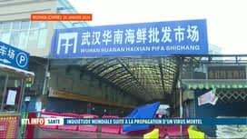 RTL INFO 19H : Virus en Chine: conseils de vigilance aux Belges se rendant à Wuhan