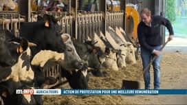 RTL INFO 19H : Les jeunes agriculteurs dénoncent des marges trop étroites