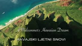 Havajski ljetni snovi : Havajski ljetni snovi