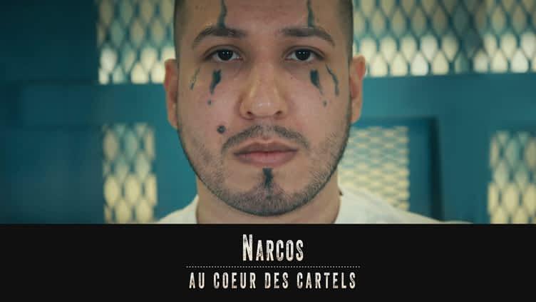 Narcos : au coeur des cartels