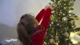 Les mamans : Opération : Sapin de Noël !