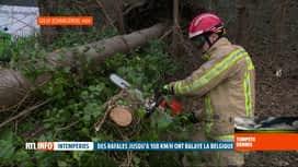 RTL INFO 13H : Tempête Dennis: des pompiers surtout appelés pour du tronçonnage