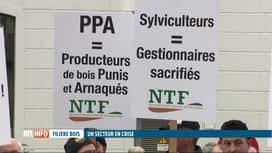 RTL INFO 13H : Manifestation des exploitants forestiers à Namur