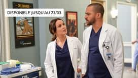 Grey's Anatomy : S16E14 A Diagnosis